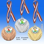 TC66ME ZWEMDIPLOMA Medailles in Hoogglans Metaal Ø 50mm. met gratis halslint - gewicht ±31 gram