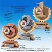 TC15123FG - Resin standaard nummer 1 (goud), 2 (zilver), 3 (brons) (± 12-14cm hoog) MET SERIEKORTING!